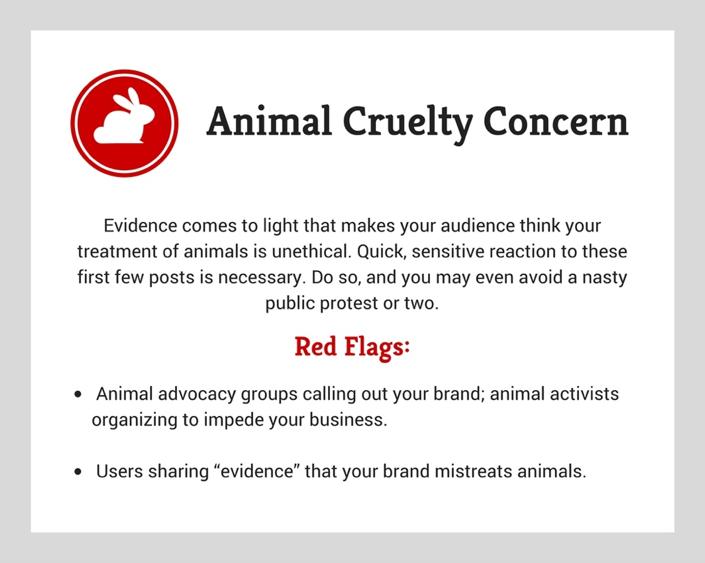 Social Media Crisis Animal Cruelty